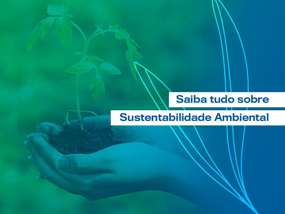 Sustentabilidade Ambiental: entenda tudo sobre o assunto
